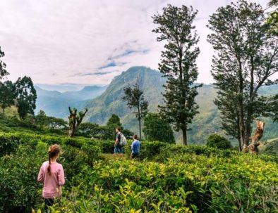 Wunderschöne Wandertour Sri Lanka